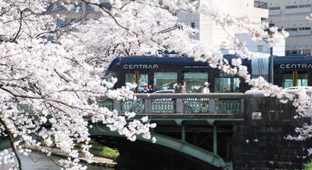 セントラムと桜